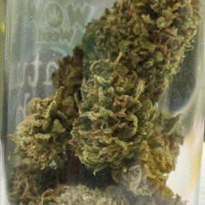 quantum-kush-wow-weed